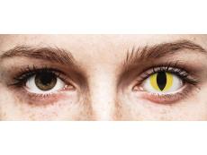 ColourVUE Crazy Lens - Cat Eye - non correttive (2 lenti)