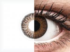 TopVue Color daily - Brown - non correttive (10lenti)