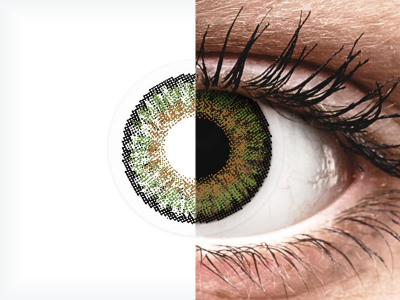 FreshLook One Day Color Green - non correttive (10 lenti)