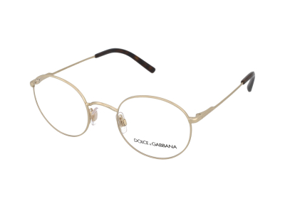 Dolce & Gabbana DG1290 488